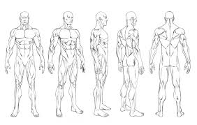 human figure drawing template