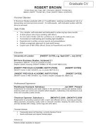 Example Resume  Resume Templates For It Professionals With Personal Profile And Career History  Resume happytom co