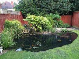 Decorative Pond Draining U0026 Cleaning Garden Pond Time Lapse Youtube