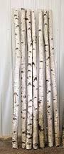 Decorative Branches For Vases Uk Amazon Com Decorative Birch Poles 4ft 4 Poles 1 1 2