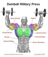 Muscles Used When Bench Pressing Dumbell Military Press The Soul U0027s Temple Pinterest Military