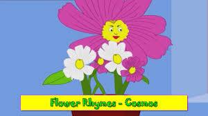 cosmos rhyme flower rhymes for children nursery rhymes for