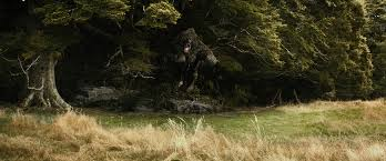 beorn the one wiki rule them all fandom powered wikia beorn bear form