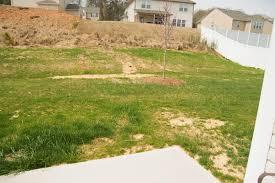 the grass isn u0027t always greener bless u0027er house