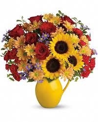 606 best calgary same day flowers free delivery images on