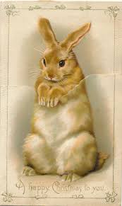 card templates cat christmas cards exquisite tuxedo cat