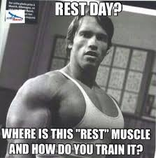 Best Gym Memes - 64 best gym memes images on pinterest gym memes jokes quotes