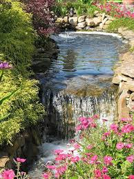 Small Backyard Ponds And Waterfalls by 281 Best Garden Ponds Waterfalls And Features Images On Pinterest