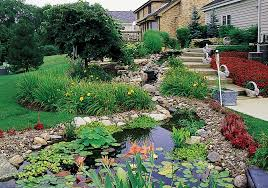 landscaping with rocks ideas