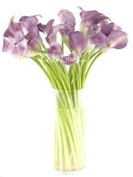 purple calla lilies purple lavender
