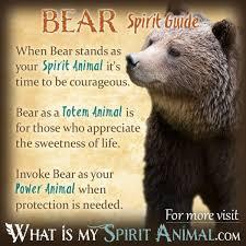 native american animal symbols meanings animal symbolism