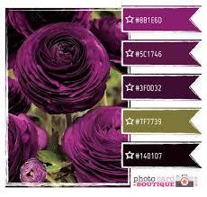211 best purple and olive images on pinterest olives olive