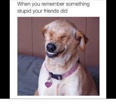 Stupid Friends Meme - when you remember something stupid your friends did friends meme