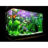 fish farm tank quality fish farm tank sale