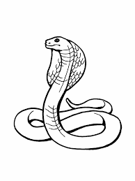 snake coloring in pages snake coloring