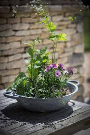 Table Top Herb Garden Bibury Table Top Planter Galvanised Steel Garden Trading