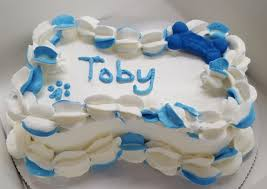 Where To Buy Cake Decorating Supplies San Diego U0027s 1st Dog Bakery Paw Pleasers
