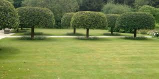 www freshome com sara warren landscape garden design in worthing onetwothree idolza