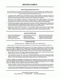 resume template for managers executives definition of terrorism hr resume sle resume hr mike dearborn human resources executive