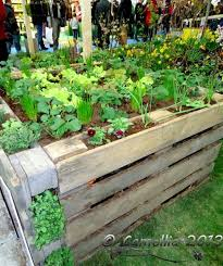Garden Ideas With Pallets Ideas Pallets Raised Garden Beds 14 Pinteres
