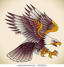 eagle stock images royalty free images vectors