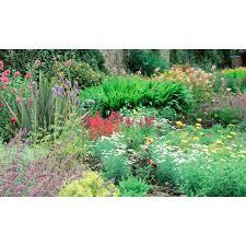 biggies 100 in x 60 in window well scene garden ww gdn 100