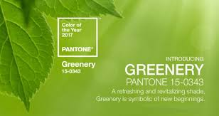 pantone color 2017 greenery 2017 pantone color of the year smallhouse