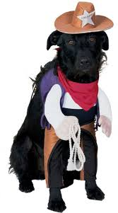 great dog halloween costumes 112 best pets and pet costumes images on pinterest pet costumes