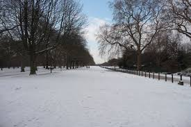 snow in hyde park trio travels