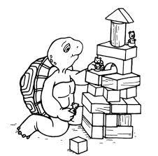 25 franklin turtle ideas