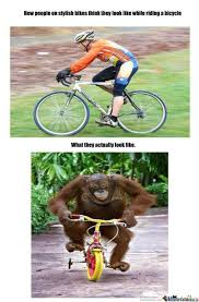 Bike Meme - insanely mountain bike meme fast mobilefriendly generator make