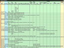 Project Management Spreadsheet Demoing A Requirements Gathering Template For It Project