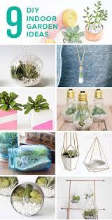 best 20 mini terrarium ideas on pinterest terrarium diy
