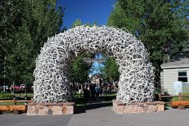 top 10 things to do in jackson hole wy best of wyoming trip101