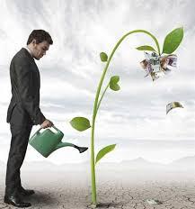 Phd dissertation help finance   Custom professional written essay     sasek cf Phd dissertation help finance   Custom professional written essay service