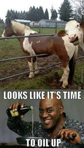 Soon Horse Meme - don t mooooove too much this will be over soon said the beef to