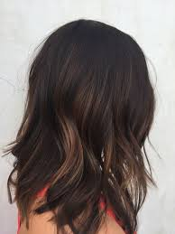 Color Suggestions For Website Best 25 Dark Hair Ideas Only On Pinterest Hair Color Dark Dark