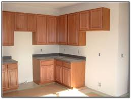 pre assembled kitchen cabinets frameless door styles kitchen