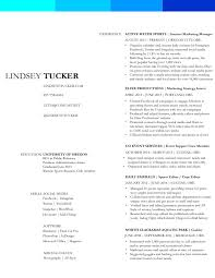 Punctuation In Resumes Big Green Help Essay Hotel Sales Administrative Assistant Resume