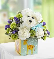 Dog Flower Arrangement Flowers New Baby Flower Arrangements Price 149 99 Shop 1