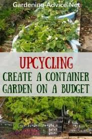 Vegetable Container Garden - container gardening tips for beginners