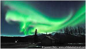 anchorage alaska northern lights tour polar bear northern lights tour photos wild alaska travel