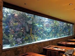 Fish Tank Reception Desk File Mirage Aquarium 8226785671 Jpg Wikimedia Commons