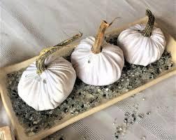 white pumpkins white pumpkins etsy