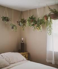 hanging plants in the bedroom bedroom pinterest hanging