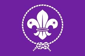 world organization of the scout movement wikipedia