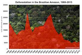 plants native to brazil rainforests of brazil u2014an environmental status report