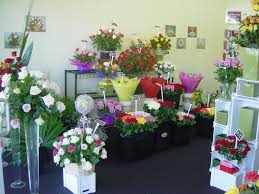 Gosford Central Coast Australia Roses2go Florist East Gosford Roses2go Florists Central Coast