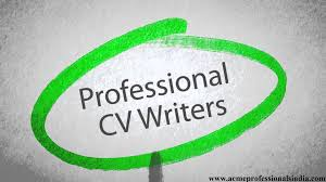 resume writing services online zimbabwe professional resume cover letter cv writing online cv professional resume