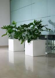 vaso resina bianco sconto 15 vasi resina
